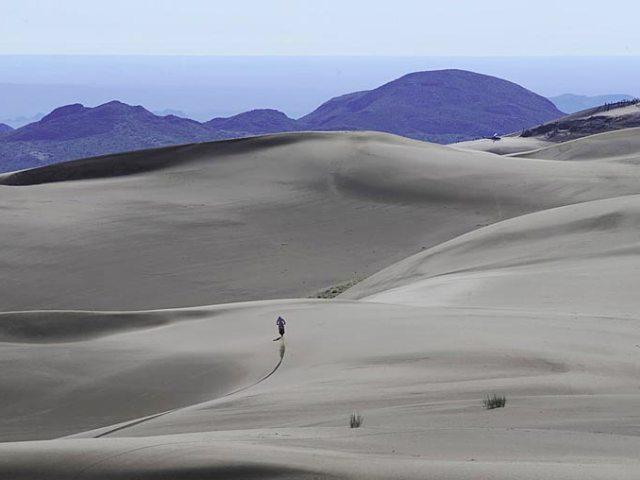 Dakar Landscape